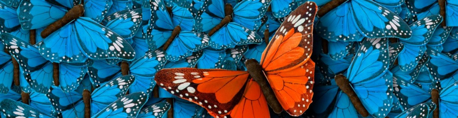 background-of-buterflies-picture-id804655092